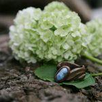 Колечко из дерева с камнем бирюзы