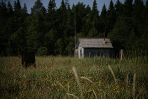Домики в урочище Белужьем