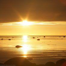 Что посмотреть на Соловках? Золото Белого моря.